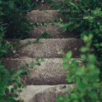 Artículos sobre MADURESCENCIA