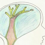 ¿qué es la psicoterapia?